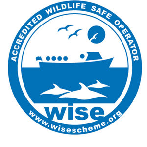 The WiSe Scheme logo